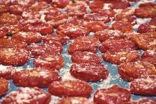 Secando tomates al sol, con sal !